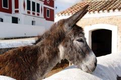 Menorca - Balearic Island - España Imagenes de archivo