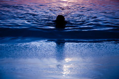 Mens bij zonsondergang Stock Afbeelding