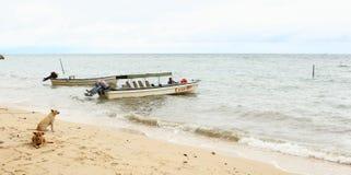 Mens in boot op het overzees Stock Foto