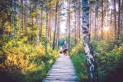 Mens in bos Stock Afbeelding
