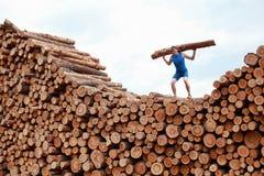Mens bovenop grote stapel van logboeken, opheffend zwaar logboek Stock Afbeeldingen