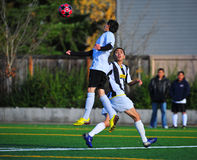 Mens club Soccer jumping royalty free stock photography