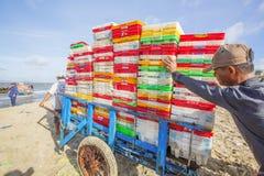 Mens die aan de de vissenmarkt van strand dichtbij Lange Hai werken Stock Foto's