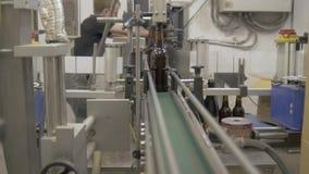 Mens die aan een fabriek werken Flessen op transportbandlijn De flessenbeweging van het bier bruine glas langs de transportband a stock video