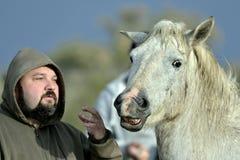 Mens die aan een Paard spreken Stock Fotografie