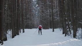 Mens die alleen in aard ski?en stock video