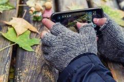 Mens die beeld van de herfst op zijn smartphone nemen stock foto