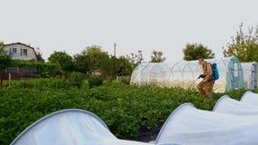Mens die beschermende masker en glazennevelspesticiden op aardappelgebied dragen stock video