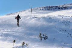 Mens die in de bergen wandelen Royalty-vrije Stock Afbeelding