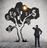 Mens die de schets van de dollarboom met glanzend dollarteken bekijken Stock Fotografie