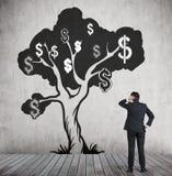 Mens die de schets van de dollarboom met zwart-wit dollarsi bekijken Stock Afbeeldingen