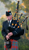 Mens die de Schotse Doedelzak spelen stock afbeeldingen