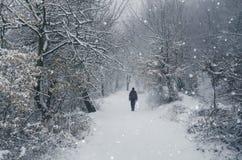 Mens die in de sneeuw loopt royalty-vrije stock foto