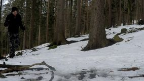 Mens die in de winterbos lopen met Noordse Wandelstokken stock video