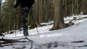 Mens die in de winterbos lopen met Noordse Wandelstokken stock footage