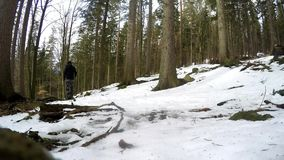 Mens die in de winterbos lopen met rugzak en stokken stock video