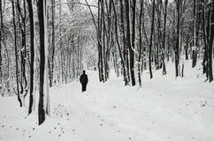 Mens die in de winterbos lopen met sneeuw royalty-vrije stock foto's