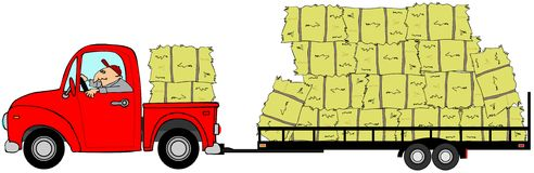 Mens die die een vrachtwagen en een aanhangwagen drijven met hooi wordt geladen Royalty-vrije Stock Fotografie