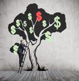 Mens die dollarboom met rood dollarteken beklimmen Stock Afbeelding