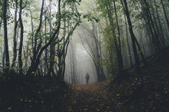 Mens die in donker Halloween-bos lopen stock foto