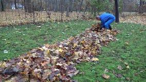 Mens die droge bladeren vullen in materiële zakzak in de herfsttuin 4K stock video