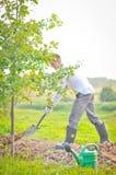Mens die een boom plant. stock foto's