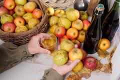 Mens die een glas cider, fles en organische appelen op drinken Royalty-vrije Stock Fotografie