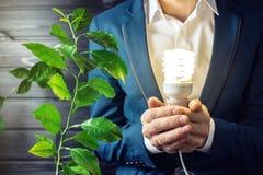 Mens die een het gloeien licht houden dichtbij de groene spruitboom Royalty-vrije Stock Fotografie
