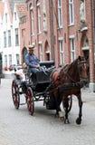 Mens die een paard en een vervoer drijven Stock Afbeeldingen