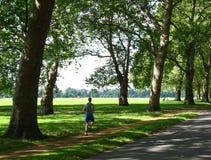 Mens die in een park aanstoot Stock Foto