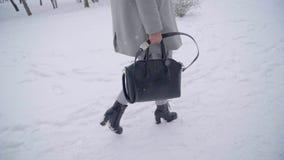 Mens die een zak van het meisje in het park stelen diefstal Het concept van de misdaad Vrouw die in een de winterpark lopen, dief stock video