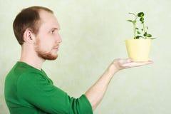 Mens die gele bloempot met installatie Kalanchoe houdt Royalty-vrije Stock Foto