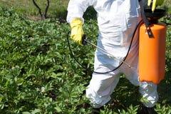 Mens die giftige pesticiden of insecticiden in moestuin bespuiten stock foto