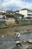 Mens die goud zoeken in de rivier van Mariana, Brazilië Royalty-vrije Stock Foto's