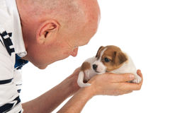 Het houden van leuk puppy in handen stock afbeeldingen