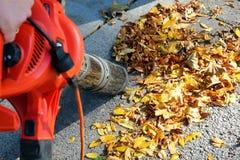 Mens die met bladventilator werken: de bladeren worden gewerveld op en neer op een zonnige dag Stock Foto's