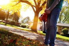 Mens die met bladventilator werken: de bladeren worden gewerveld op en neer op een zonnige dag Royalty-vrije Stock Fotografie