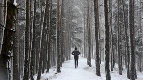 Mens die onderaan de weg in een sneeuwbos lopen stock videobeelden