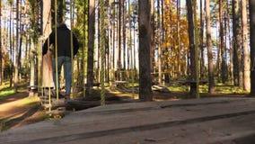 Mens die op kabels tussen bomen lopen stock videobeelden
