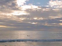 Mens die op surfplank paddelen Royalty-vrije Stock Foto
