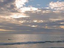 Mens die op surfplank paddelen Stock Afbeelding