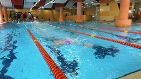 Mens die in pool zwemt Geschikte jonge mannelijke zwemmer opleiding in de pool De jonge mens die de voorzijde zwemmen kruipt in e stock video