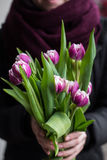 Mens die roze tulpen houden Het malplaatje van de giftkaart, affiche of groetkaart - man holdingsboeket van roze tulpen voor een  Royalty-vrije Stock Foto's