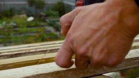 Mens die schroef installeren in houten raad Voorraadlengte De mens schroeft een schroef in de Raad met een schroevedraaier stock footage
