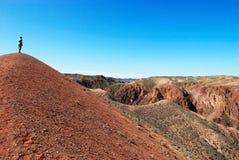 Mens die in woestijncanion loopt Royalty-vrije Stock Fotografie
