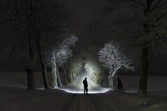 Mens die zich bij nacht in boomsteeg in openlucht bevinden die met flitslicht glanzen stock foto's