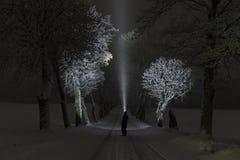 Mens die zich bij nacht in boomsteeg in openlucht bevinden die met flitslicht glanzen royalty-vrije stock foto