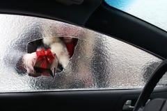Mens in een rood GLB van Santa Claus in een auto met gebroken glas Stock Foto's