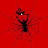Mens een spin Stock Afbeeldingen