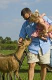 Mens en baby met geit Stock Afbeelding